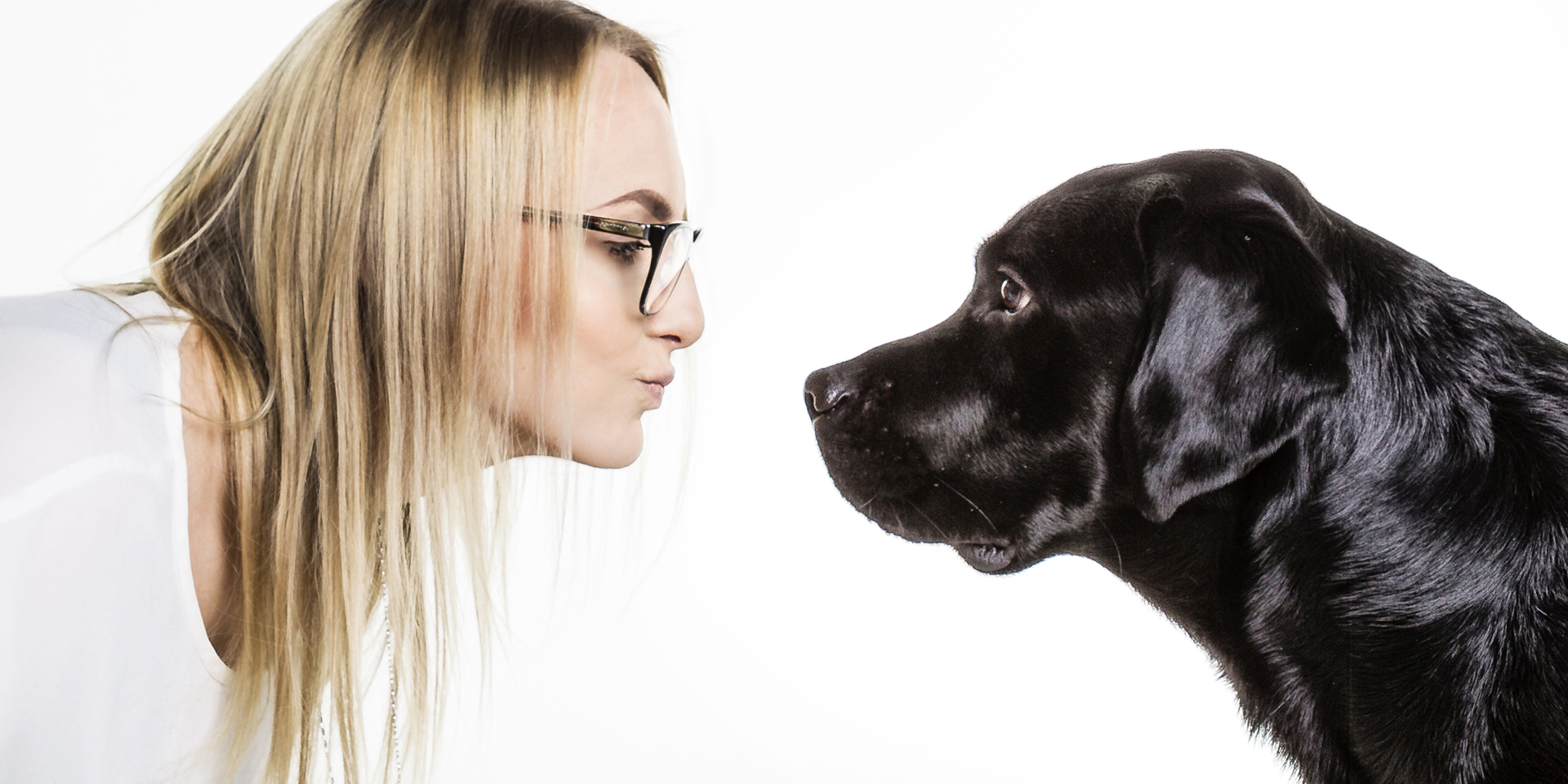 Lifestyle Hund Freundschaft